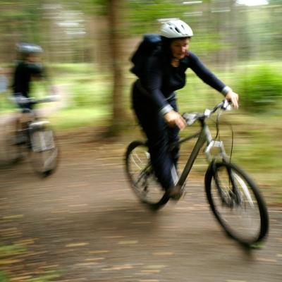 Hamsterly-bikeriding